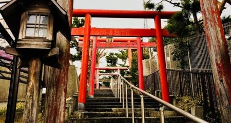 Niigata City – An Urban Oasis