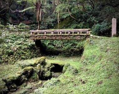 A walk through Kamoyama Park・Bezaubernd grün, Kamoyama-Park