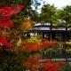 ☆LIMITED TIME Tour☆ NOV. 14th Niigata Traditional Garden Tour